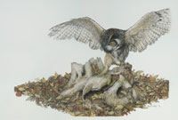Skedaddle -- Wildlife Art by Cary Savage Ingram