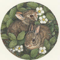 Snuggles -- Wildlife Art by Cary Savage Ingram