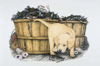 Z-Pinch Box -- Wildlife Art by Cary Savage Ingram